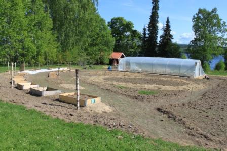 Experiment trädgården på Risäters Herrgård