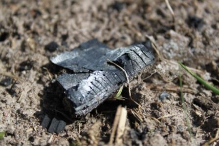 Kol och Microber underst i en odling... och du behöver inte gödsla.