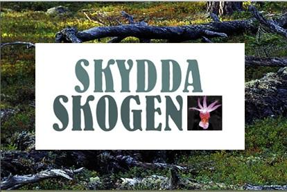 Skydda Skogen - en ideell naturvårdsorganisation