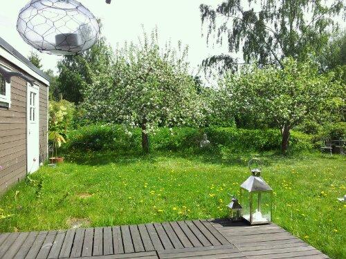 Lördagsförmiddag hemma i trädgården