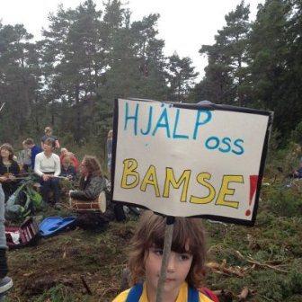 I brist på ansvarstagande vuxna så står hoppet till Bamse