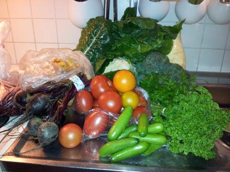 Dagens grönsaksinköp