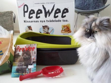 Lillkatten Dina poserar framför den nya kattlådan från PeeWee