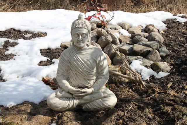 Budha är tillbaks på sin favoritplats också.